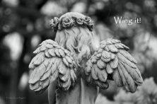 CHLOE-WINGIT
